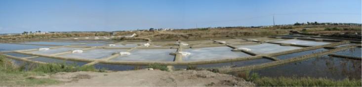 Meersalzgewinnung - Erntebecken einer Saline in Guerande